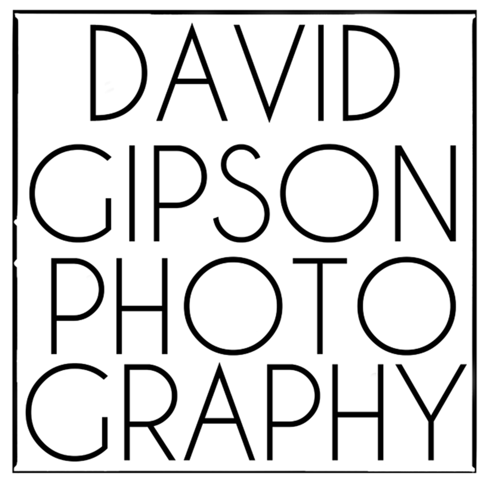 DAVID GIPSON ~ PHOTOGRAPHER: David Gipson is a Photographer and has been shooting images for the last 30 years. I specialize in Advertising, Commercial, Editorial and Fine Art. I shoot in medium format film but also shoot in digital.